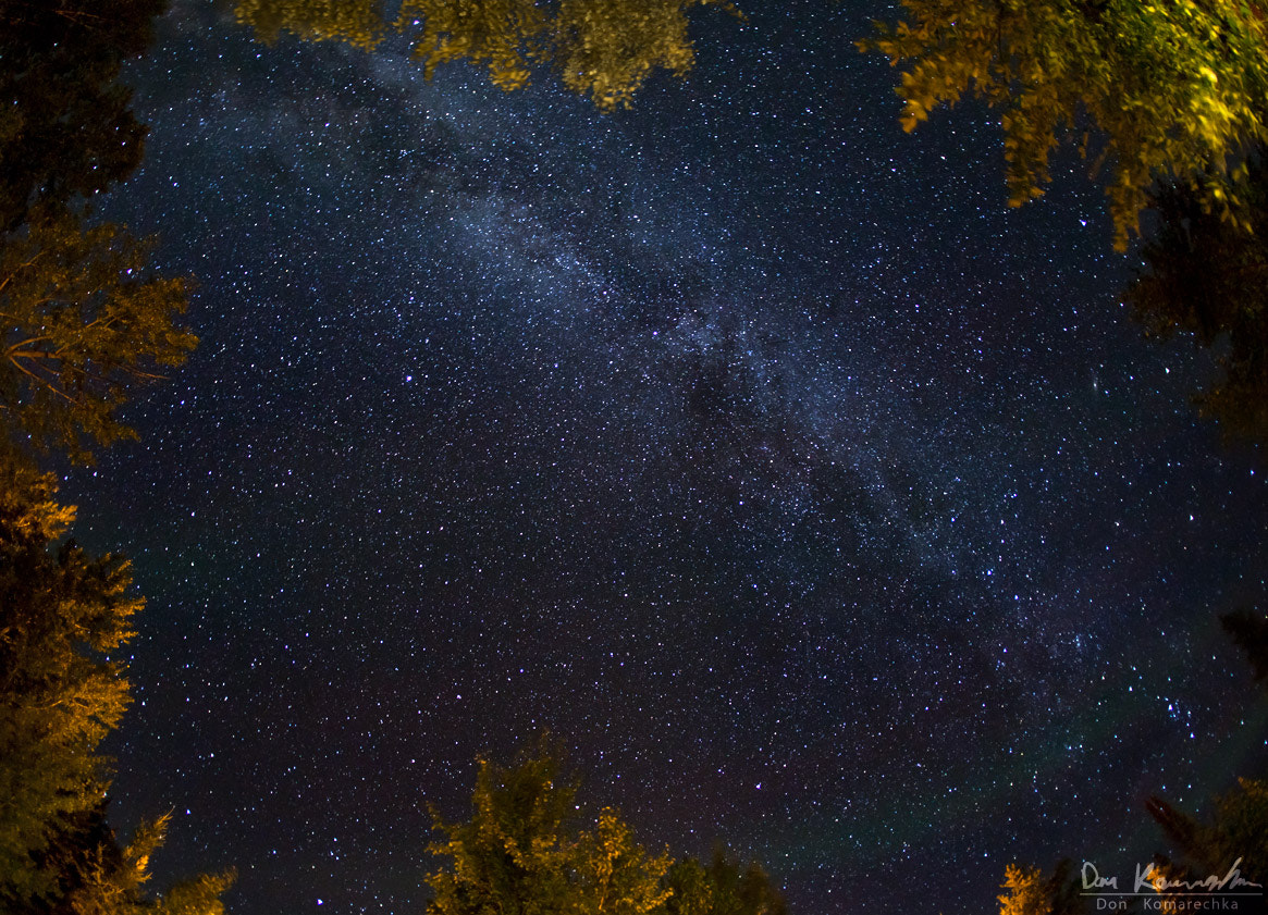 Photograph Sky over the Campfire by Don Komarechka on 500px