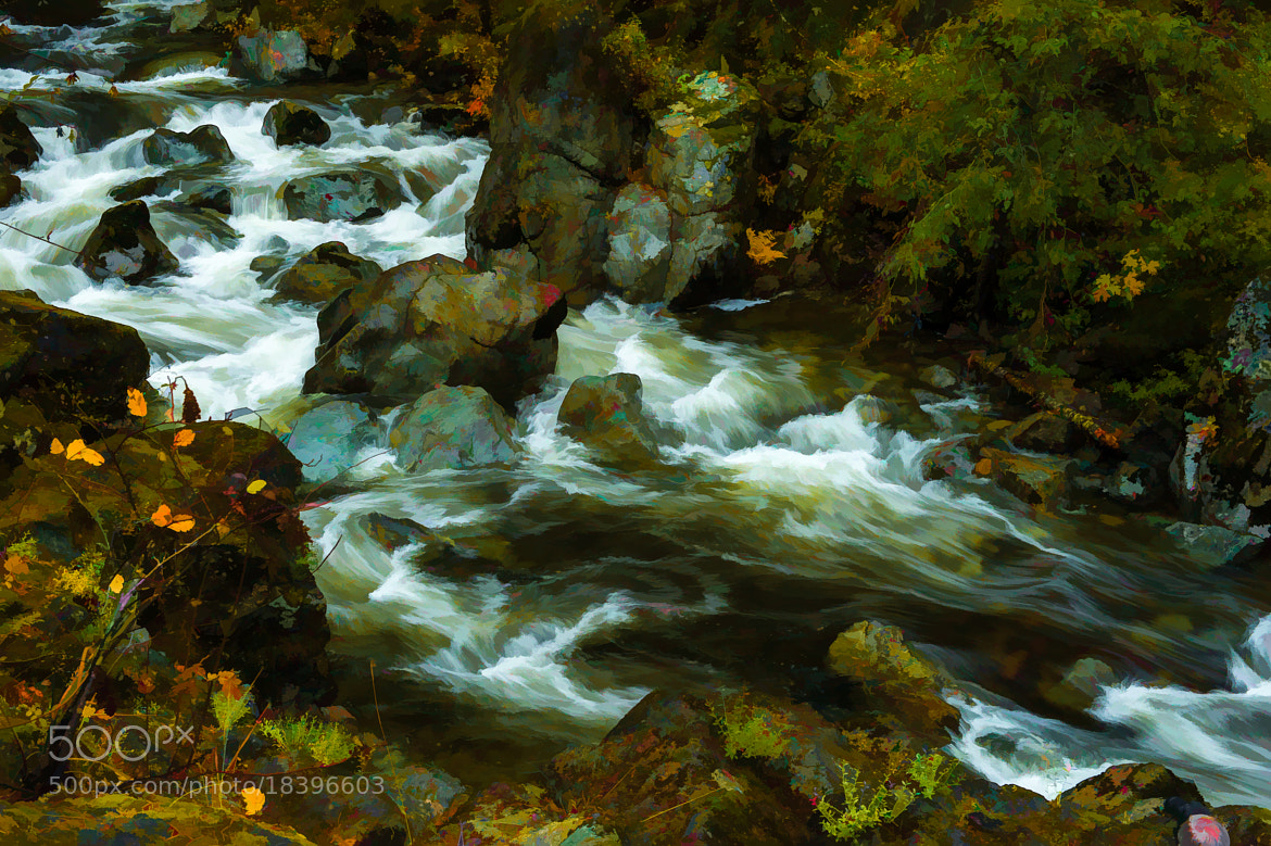 Photograph Fall on the Cowichan River by Alan Story on 500px