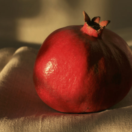 Pomegranate, Canon EOS 400D DIGITAL, Canon EF 40mm f/2.8 STM