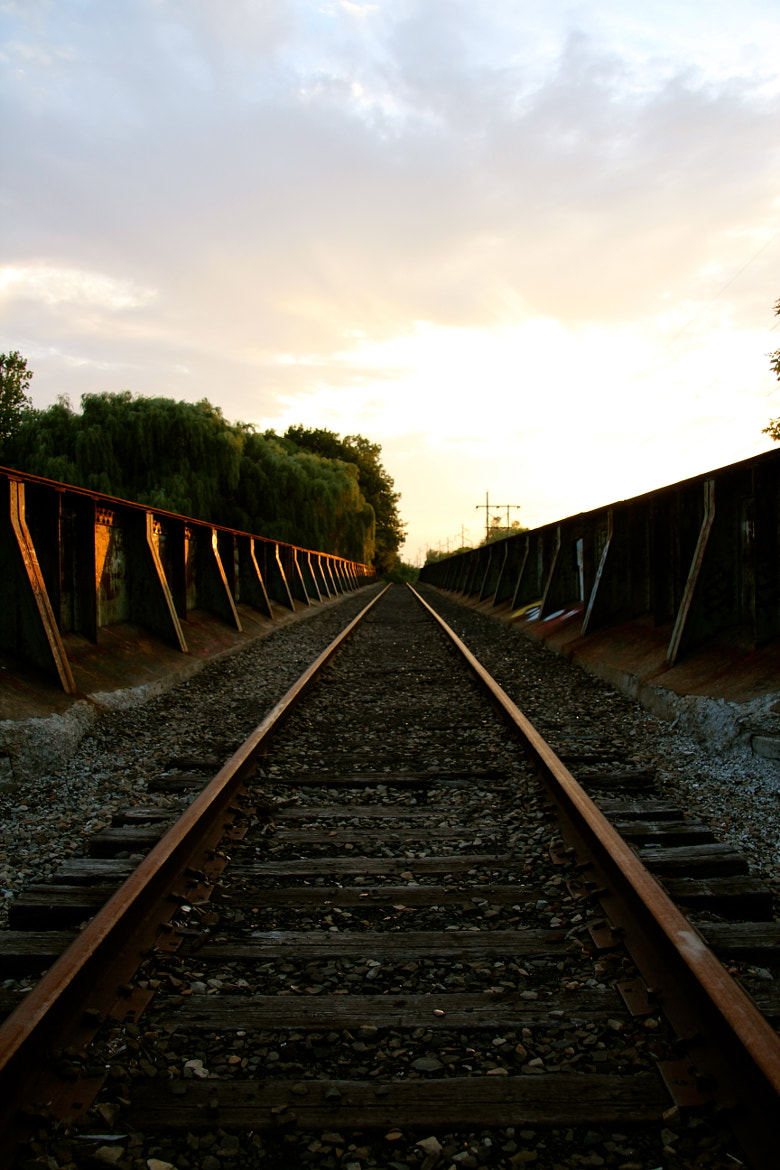 Photograph Abandoned Railroad Tracks by Brendan Dence on 500px
