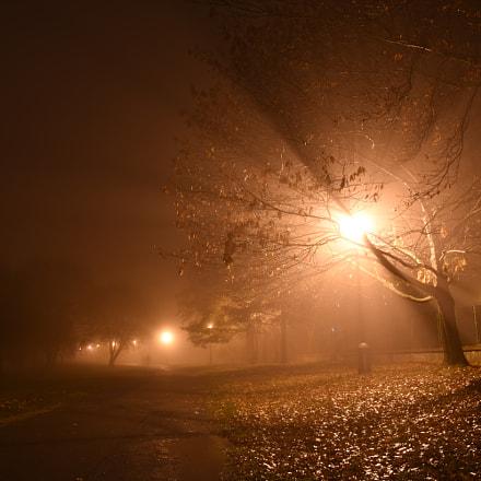 Misty evening III