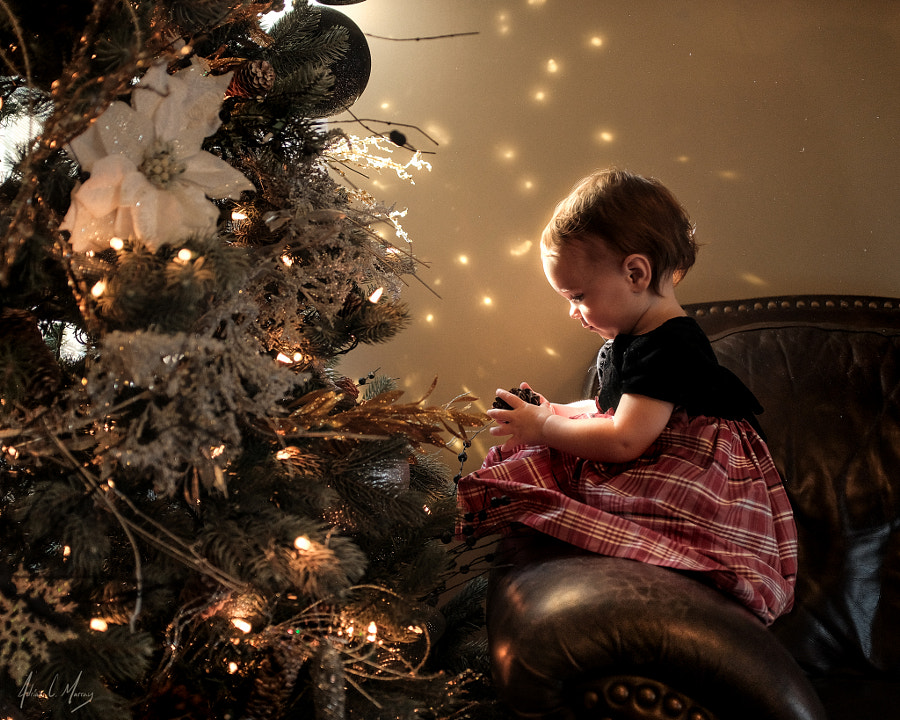 Decorating the Tree by Adrian C. Murray on 500px.com