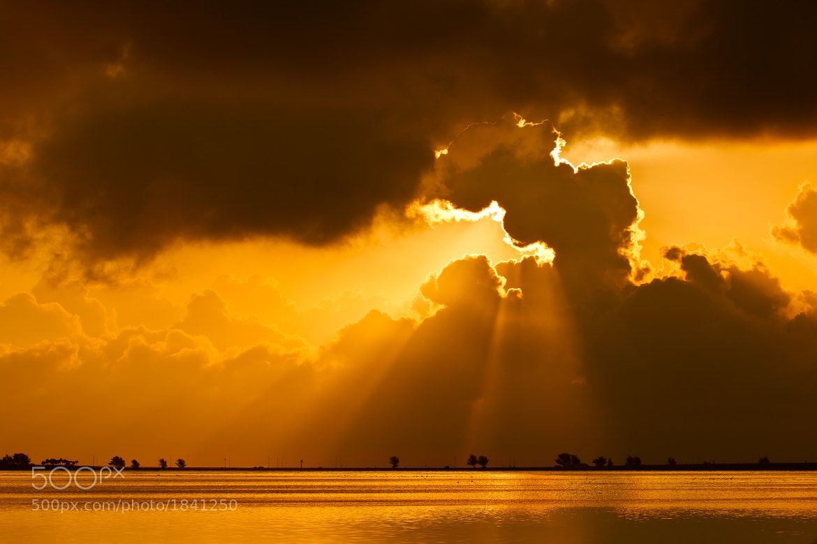 Photograph The Magic of Light by Daniel Kaufman on 500px