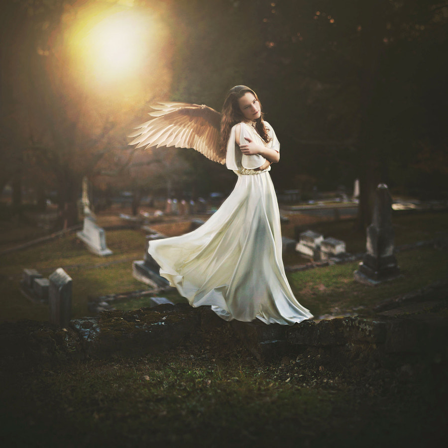 500px.comのShelby RobinsonさんによるCollector of Lost Souls