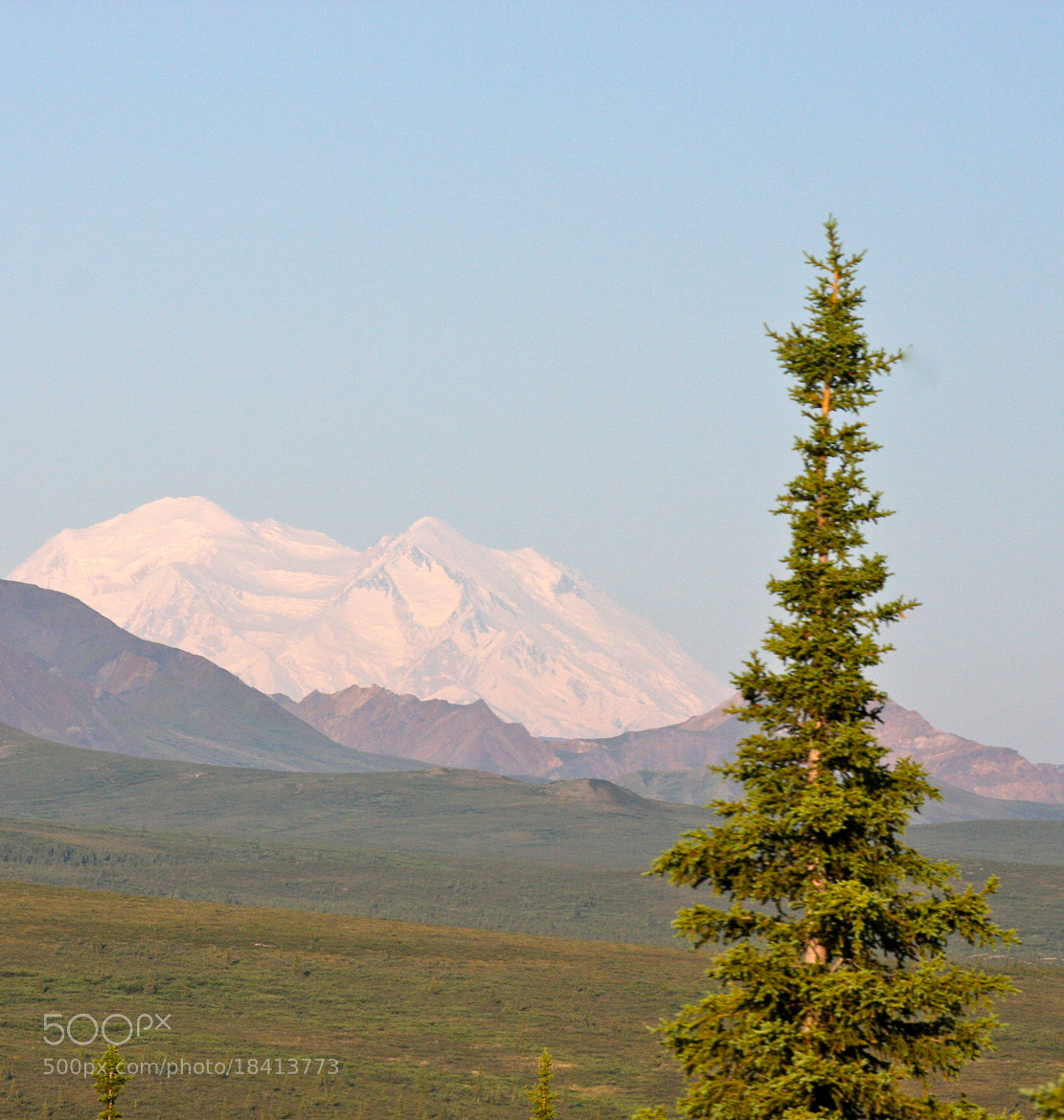 Photograph First Time I Saw Mount McKinley by Rachel Haas on 500px