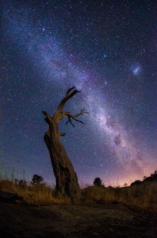 Photograph Ravenswood by Lincoln Harrison on 500px