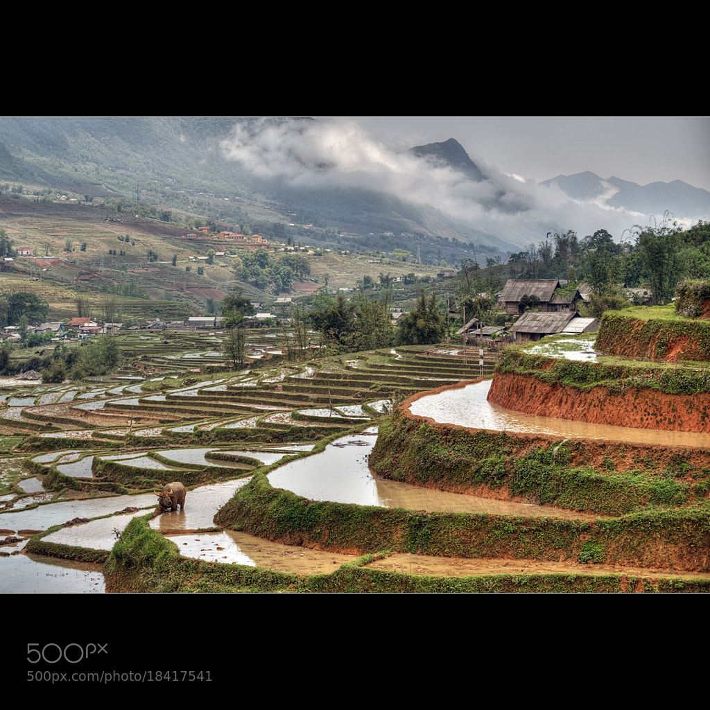 Photograph Terraced village by Malcolm Fackender on 500px