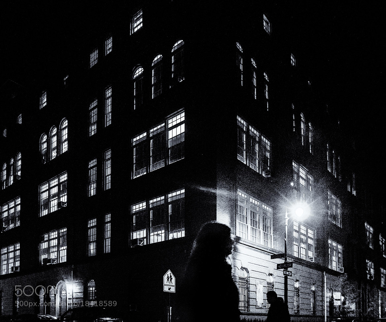 Photograph Untitled by lazslo mckenzie on 500px