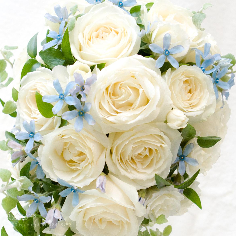 Photograph White Bouquet by Yoshitada Kurozumi on 500px