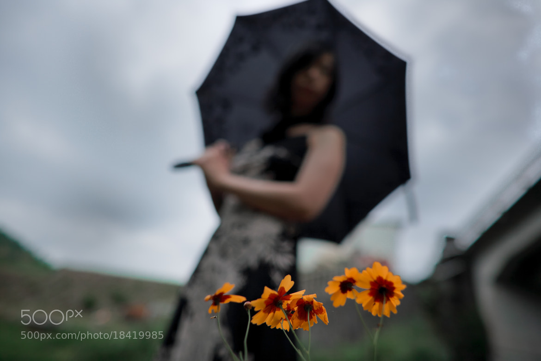 Photograph shadow on me by Kenraku Sandoh on 500px