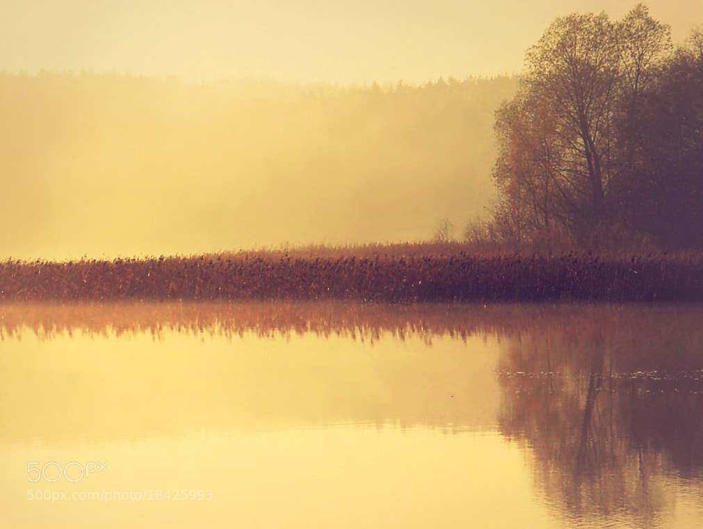Photograph Reflections in the fog  - 2 by **  REgiNA  **  on 500px