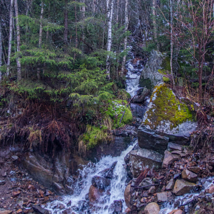 Waterfall in the woods, Canon EOS 550D, Sigma 17-70mm f/2.8-4.5 DC Macro