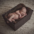 Sleeping newborn baby boy in a basket