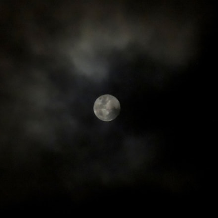 A moon in the, Nikon COOLPIX P510