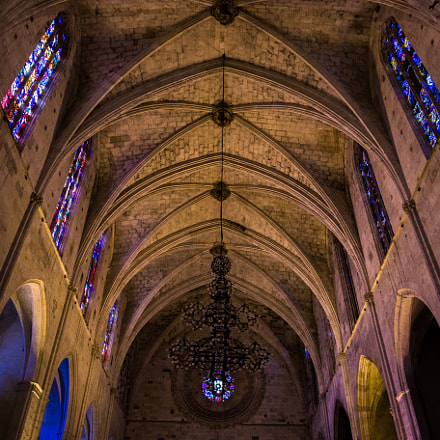 Nave of San Francisco, Canon EOS 6D, Sigma 24-35mm f/2 DG HSM | A