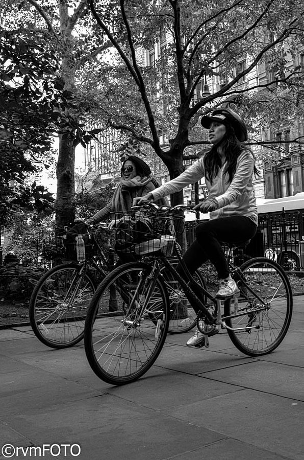 Bicycles in NY