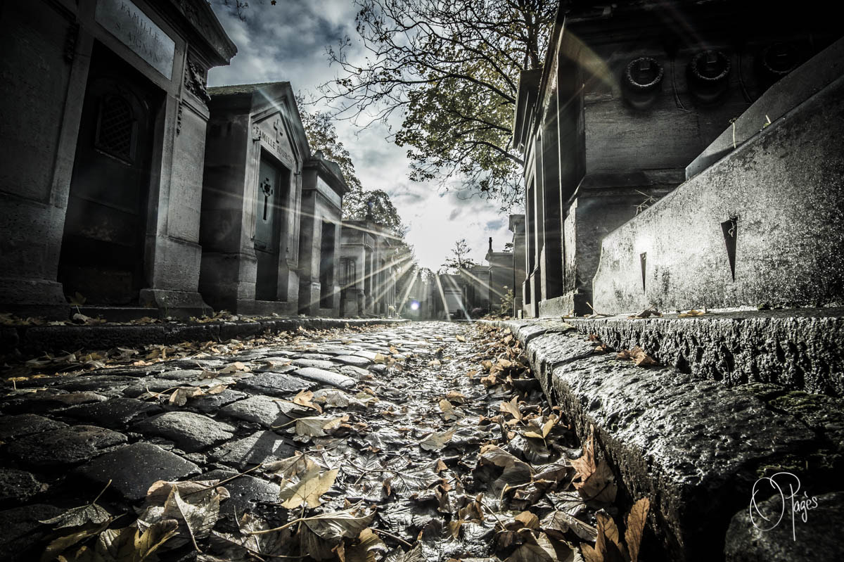 Photograph Pere Lachaise by Olivier Pagès on 500px