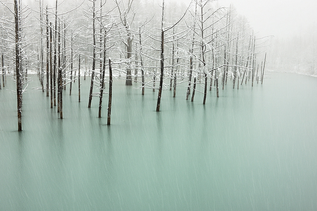 Photograph Frozen Pond & First Snow by Kent Shiraishi on 500px