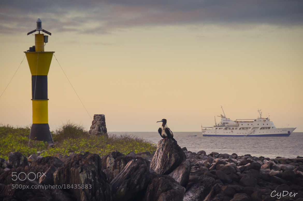 Photograph Sunset on Espanola Island, Galapagos by Cyril Deretz on 500px