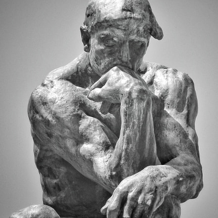 The thinker, Fujifilm FinePix S1800