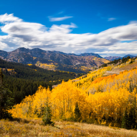 looking down big cottonwood, Canon EOS 6D, Sigma 24-105mm f/4 DG OS HSM | A