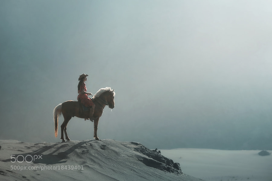 Photograph hope... by asit  on 500px