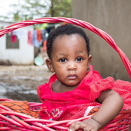 Baby in a Basket, Canon EOS 1300D, Canon EF-S 18-55mm f/3.5-5.6 III