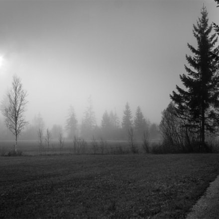 A foggy day in, Canon EOS 40D, Sigma 18-200mm f/3.5-6.3 DC OS