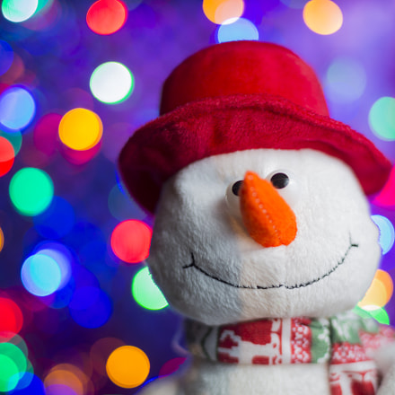 Snowman in red hat, Canon EOS 5D MARK III, Canon EF 35-80mm f/4-5.6