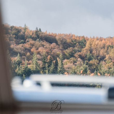 view from the boats, Sony ILCE-6000, Tamron 18-270mm F3.5-6.3 Di II PZD