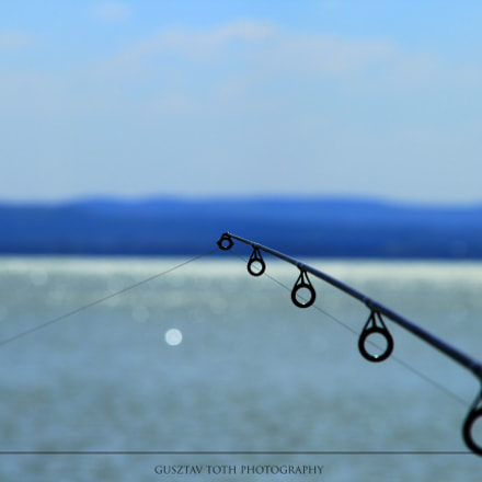 Fifty shades of blue, Canon EOS 60D, Sigma 18-200mm f/3.5-6.3 DC OS