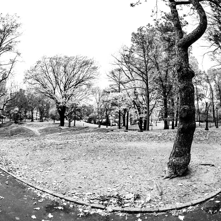 Central Park, New York, Canon EOS 5D MARK III, Canon EF 8-15mm f/4L Fisheye USM