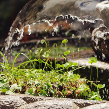 Just a little fountain., Canon EOS REBEL T6S, Canon EF-S 18-135mm f/3.5-5.6 IS STM