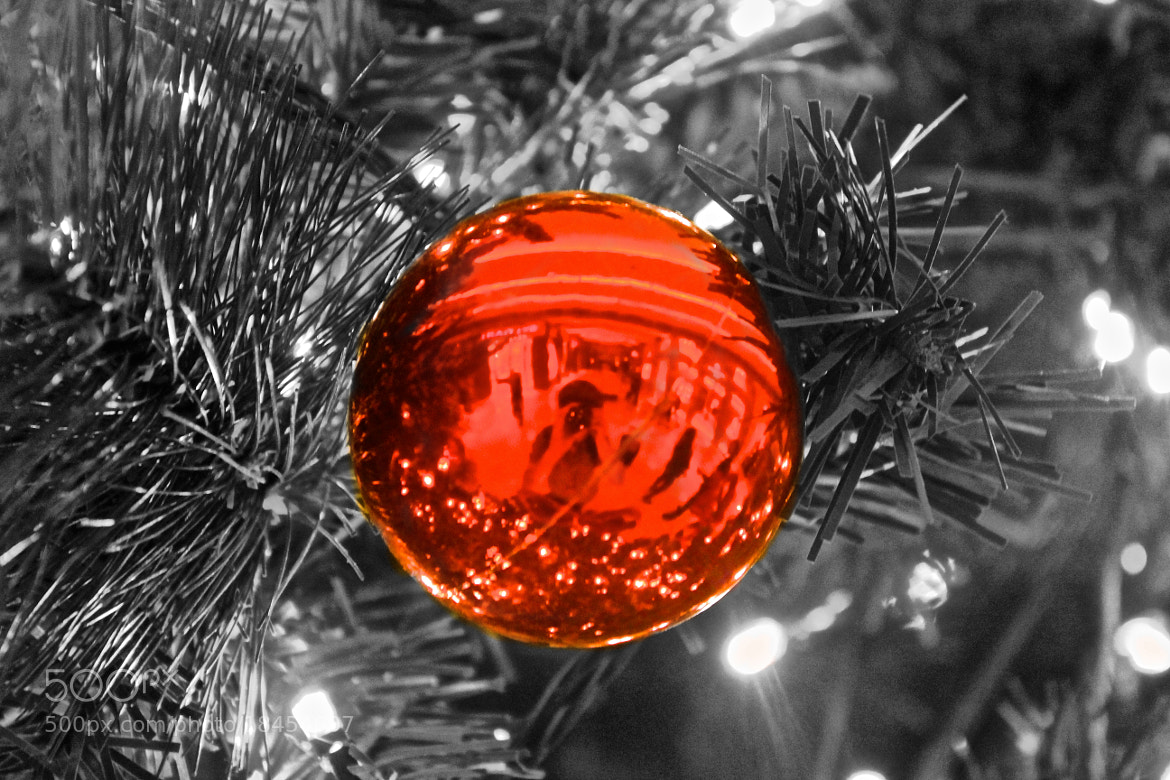 Photograph Christmas tree by jo in on 500px