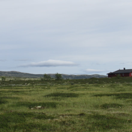 Loneliness in Norway, Canon POWERSHOT SX500 IS