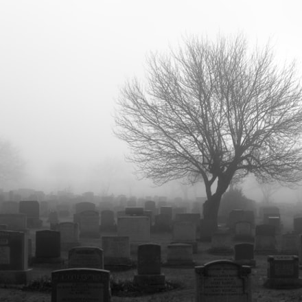 Misty cemetery, Canon EOS REBEL T4I, Canon EF-S 15-85mm f/3.5-5.6 IS USM