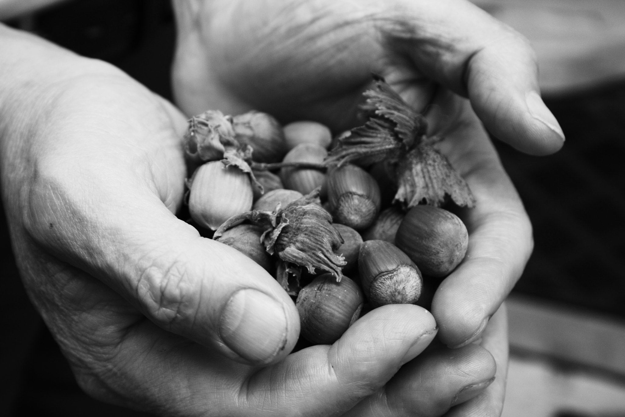 Photograph work of the hands by antonio biancardi on 500px