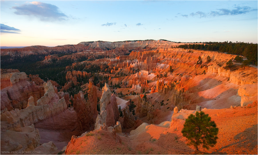 Photograph Bryce canyon at sunrise by Pascal Bovet on 500px