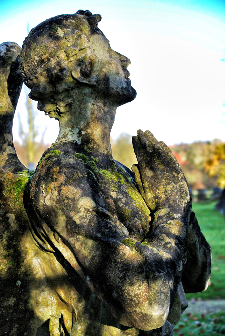 Photograph Castle Ashby Cemetery  by Karl W on 500px