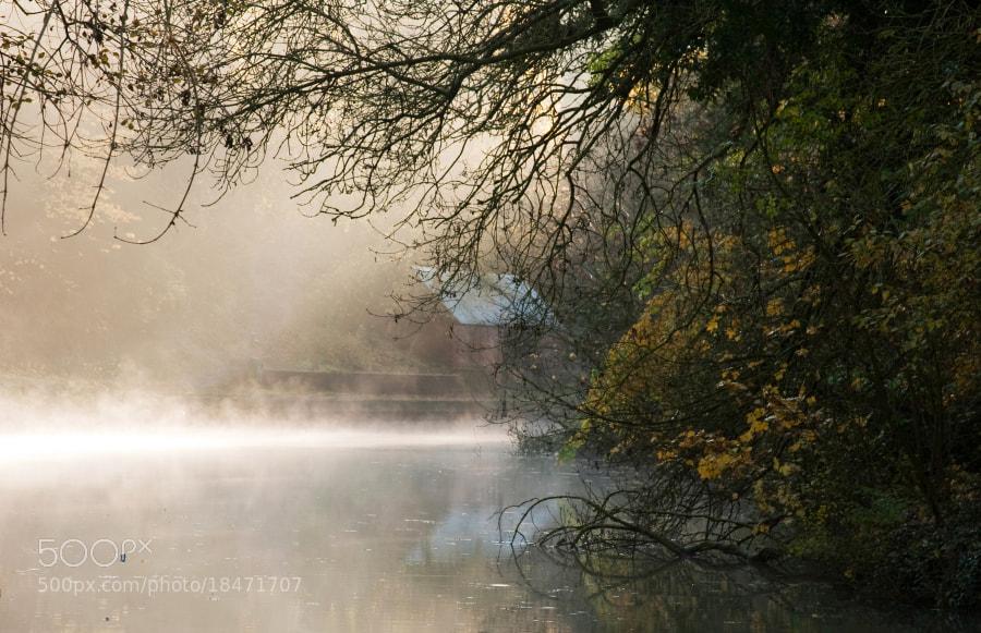 Grand Union Canal Blisworth  Northamptonshire,UK