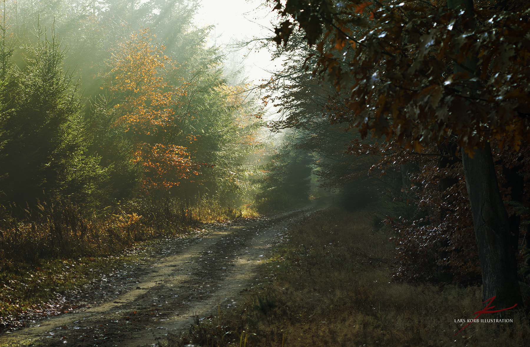 Photograph Ye Olde Trail by Lars Korb on 500px