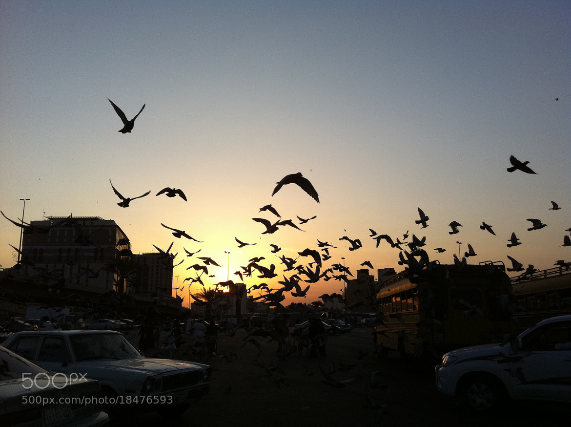 Photograph Untitled by king4madinah  on 500px