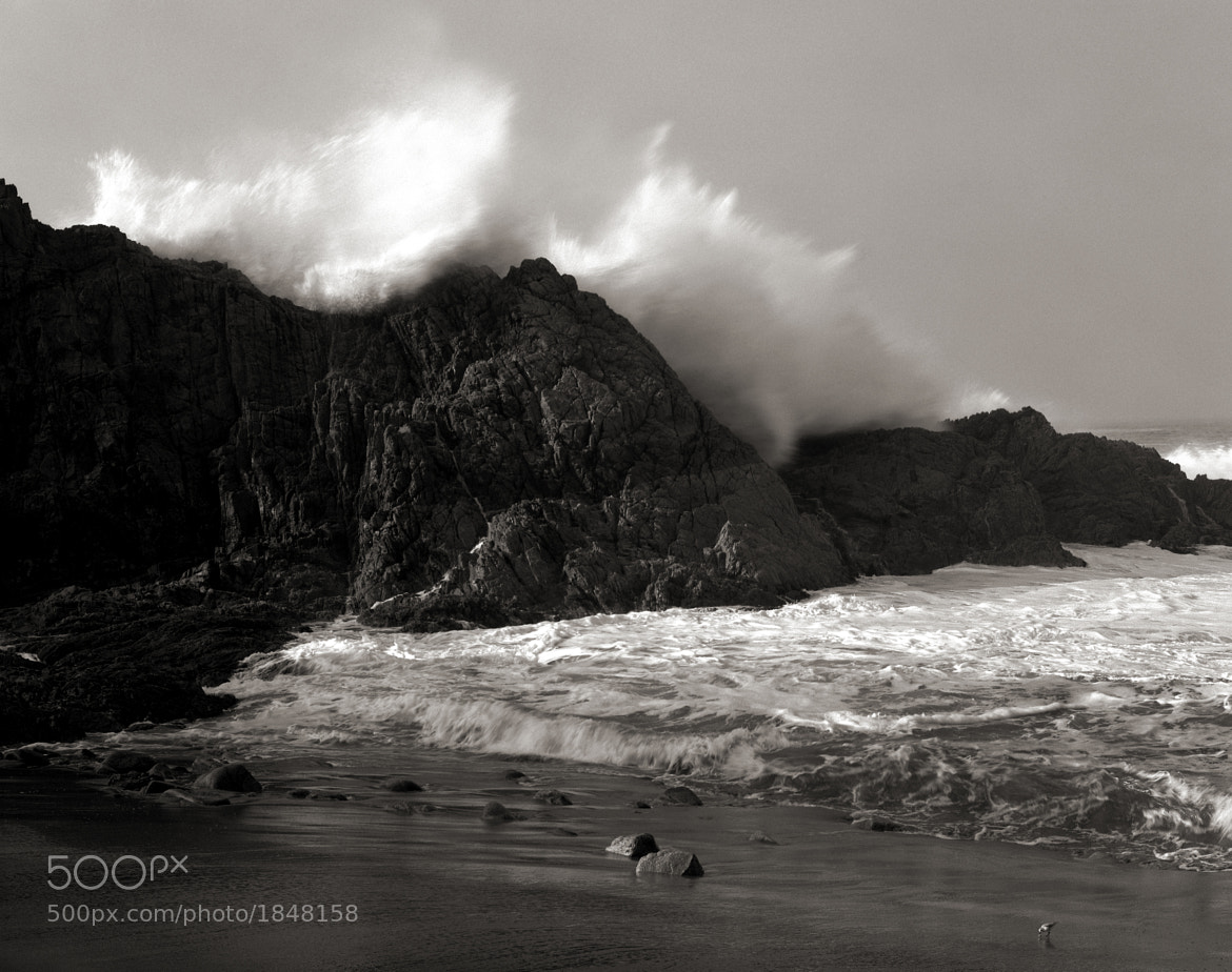 Photograph Large Wave, Little Bird, McClure's Beach, Point Reyes by Austin Granger on 500px