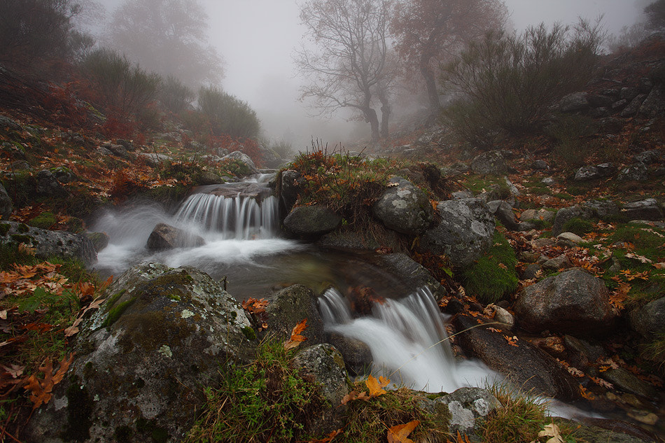 "Photograph "" Autumn Water I "" by Juan Pavon on 500px"