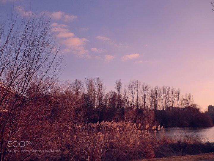 Photograph llega el invierno... by Noelia Martín on 500px