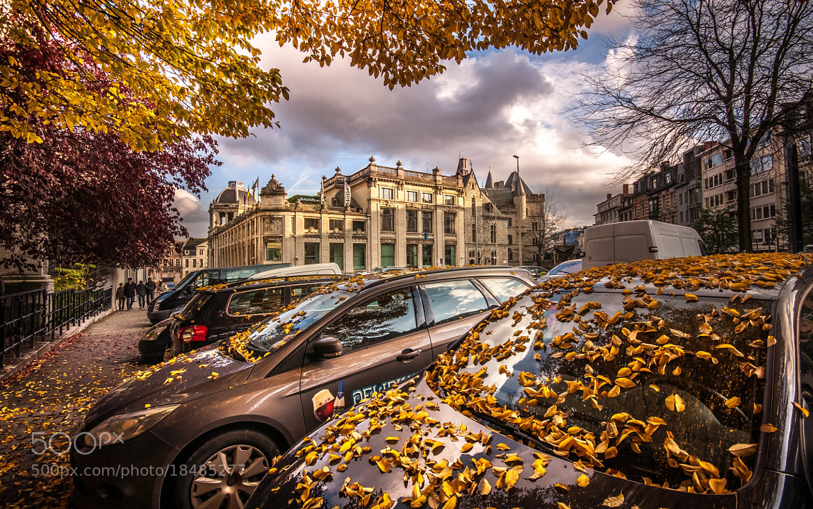 Photograph Fall, Ghent by Rudy Denoyette on 500px