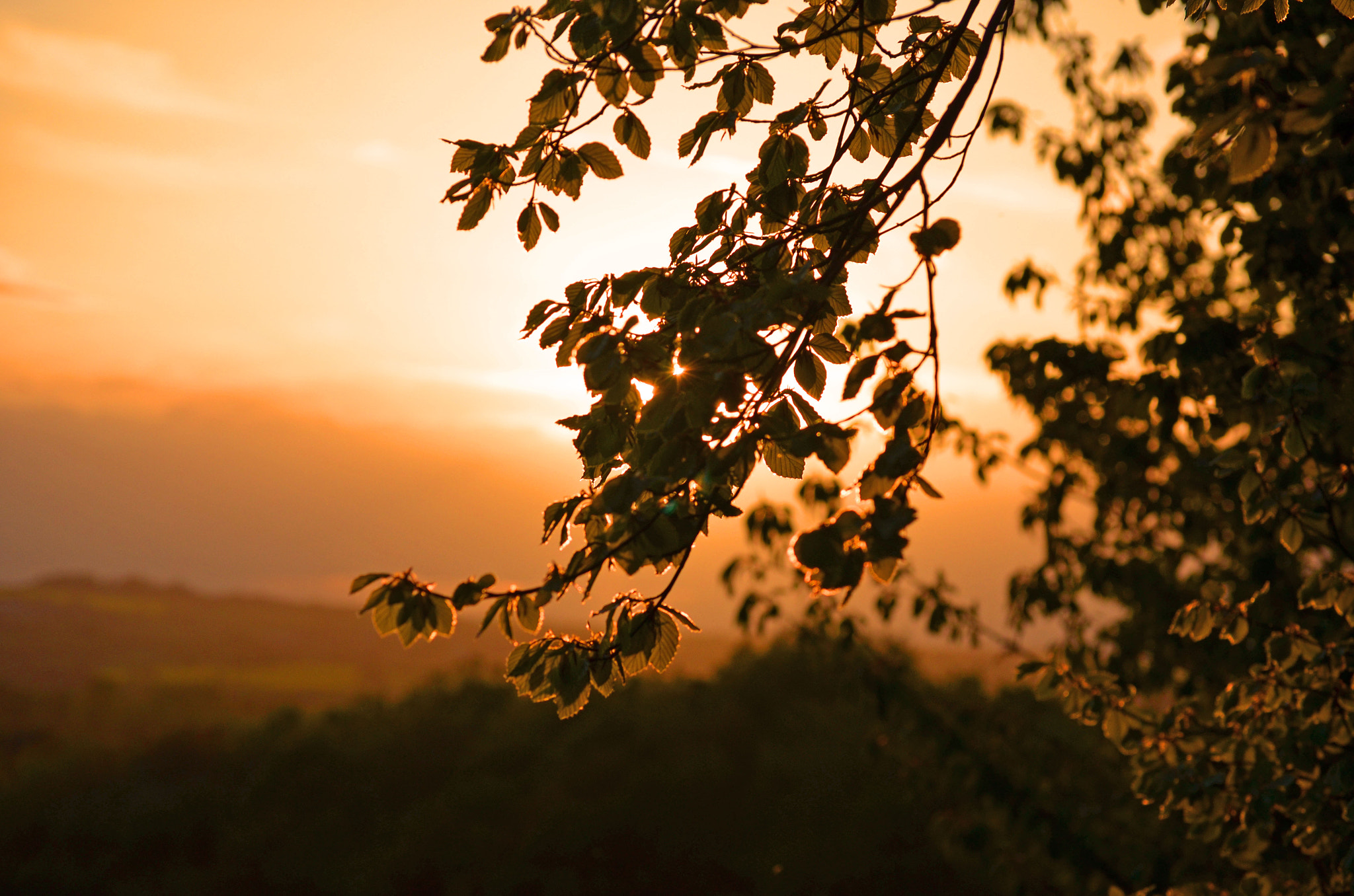 Photograph Sunset by Youngman Images on 500px