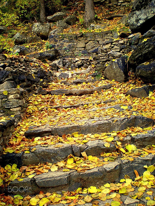 Photograph Stone stairs. by Ángel  Ramírez Gómez on 500px