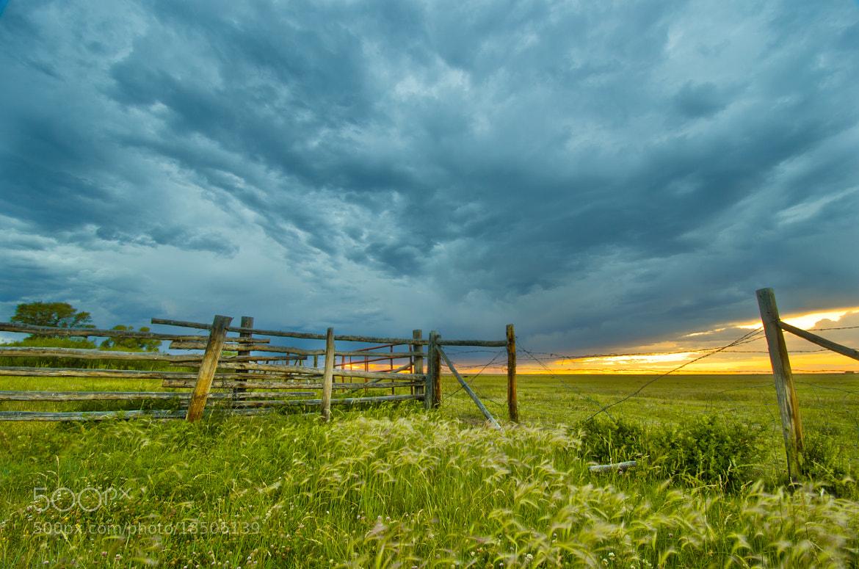 Photograph Storm by Jacob Denbrook on 500px