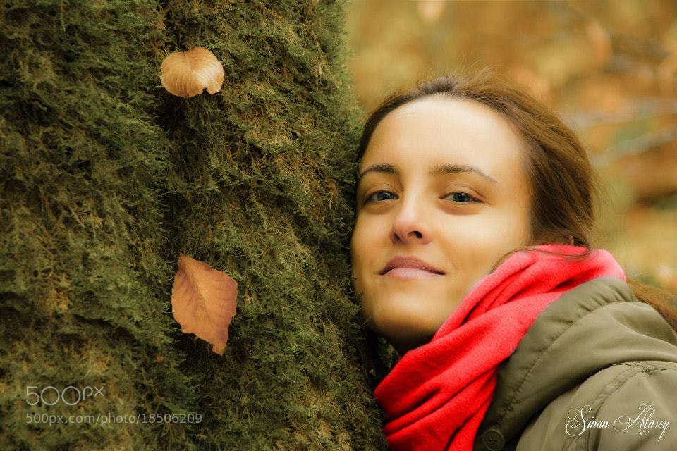 Photograph Autumn by Sinan Atasoy on 500px